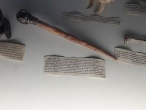 Corne de licorne transformée en sceptre